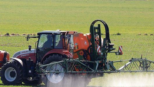 Al via la prima fase del  Bando Isi Agricoltura 2019-2020.