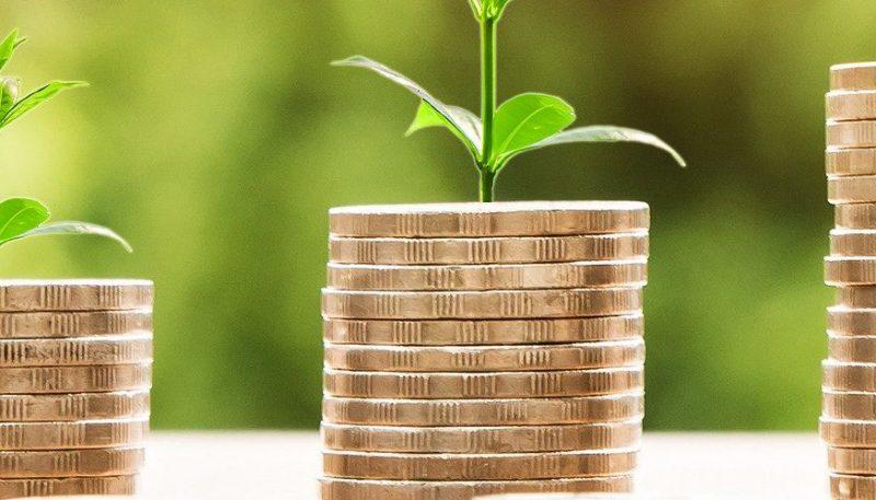 Accesso al credito PMI settore agricolo, trasformazione e commercializzazione prodotti agricoli