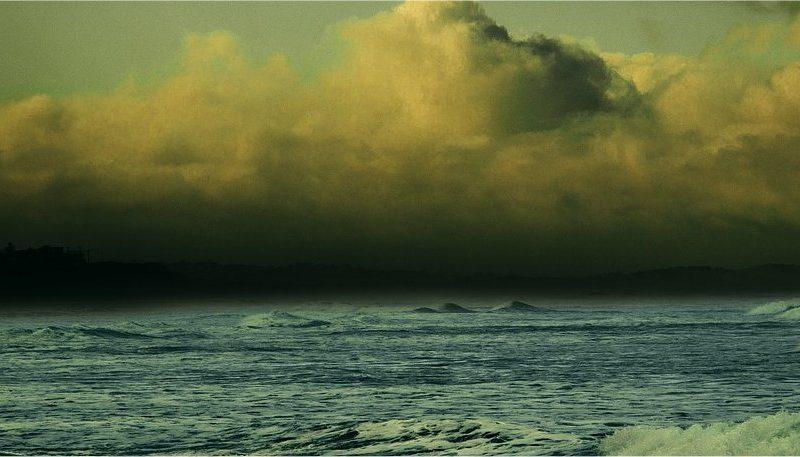 Mari e oceani trasparenti e accessibili: verso un gemello digitale dell'oceano
