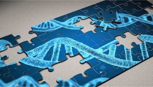 Progetto DIGI-B-CUBE: Digitalizzazione della diagnostica medica