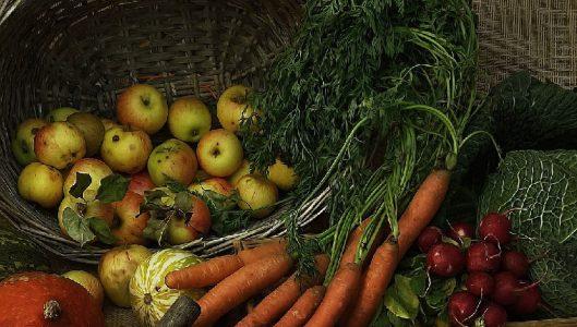 Sostegno alle start-up extra-agricole nei territori del Gal Etna Sud