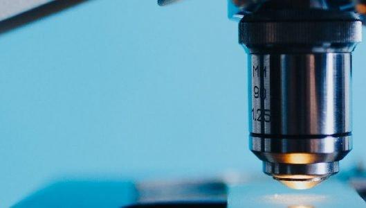 """Traiettoria 4 """"Biotecnologia, bioinformatica e sviluppo farmaceutico"""""""