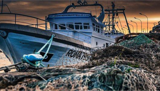 Contributi ai pescatori  della Sardegna per il fermo da pandemia
