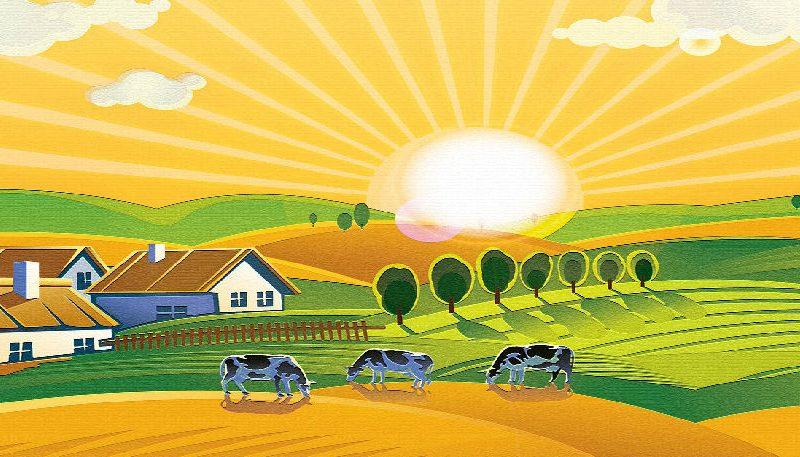 EJP Soil: prima chiamata esterna per la ricerca in agricoltura.