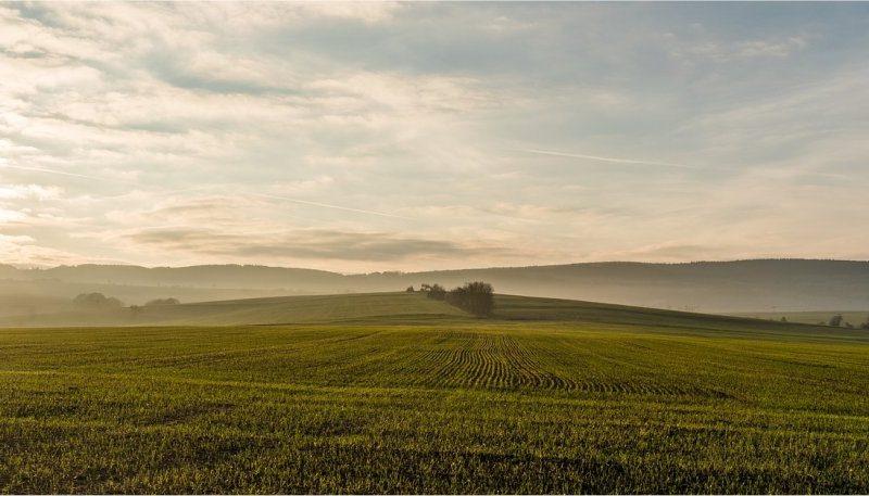BTA: In vendita 16 mila ettari di terreni agricoli in tutta Italia