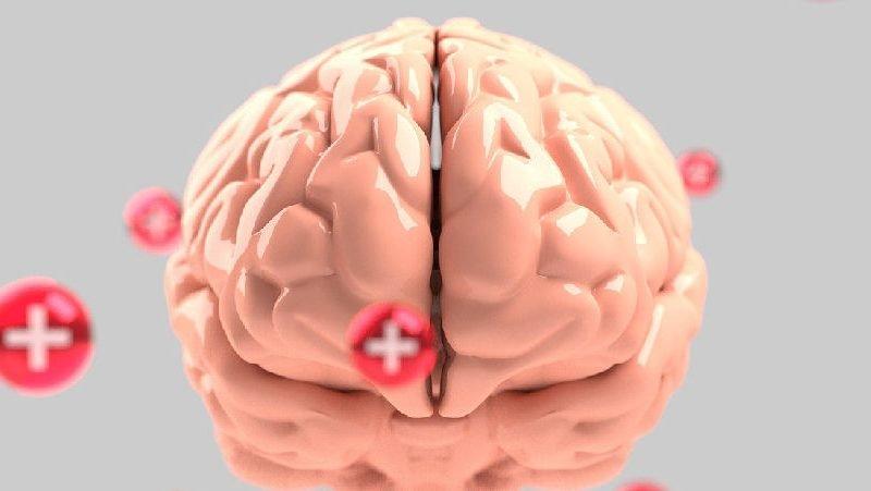 Verso una comprensione molecolare e neurobiologica della salute e della malattia mentale a beneficio di cittadini e pazienti