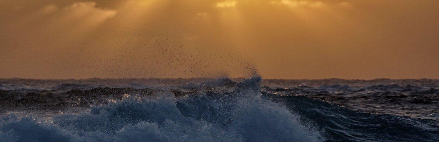 Progetti innovativi per la protezione della natura nell'Atlantico